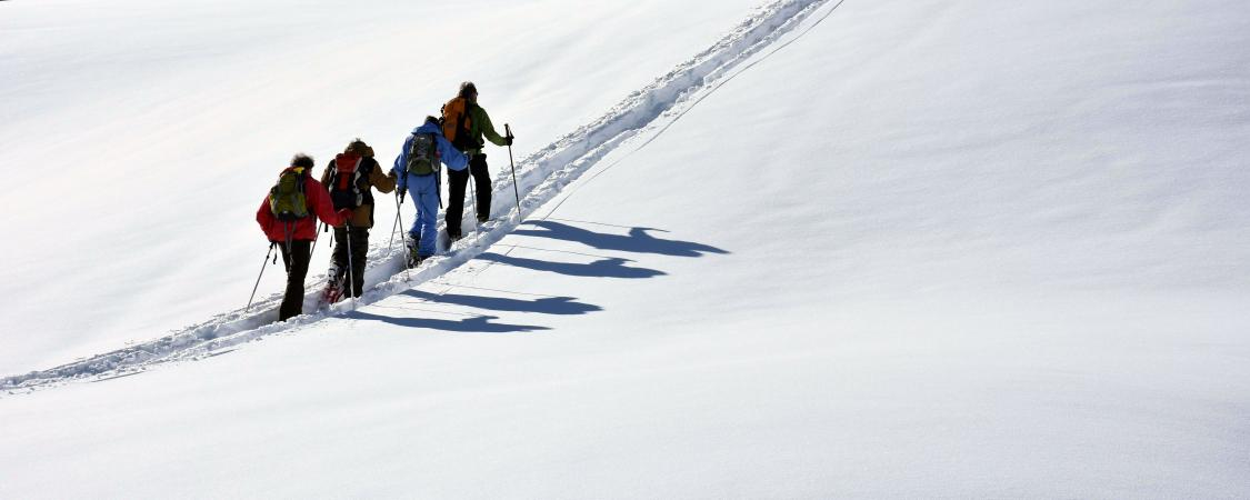 Des ombres fidèles se détachant sur une neige immaculée au col des Aravis (photo : D.Delvaux)